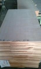 スプルース柾目板巾500ミリ