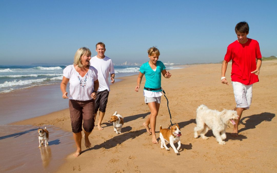 Hunde Foto: Sandra und Harro – Hier bin ich zu Hause!