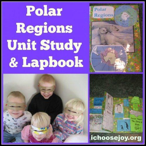 Polar Regions unit study and lapbook