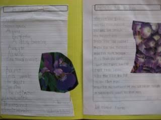 Ideas for a Plants lapbook
