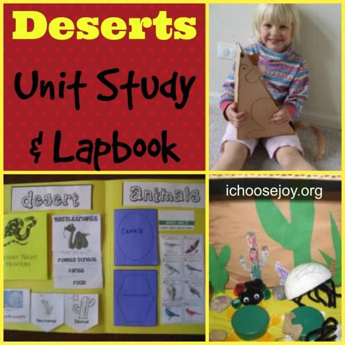 Desert Unit Study and Lapbook