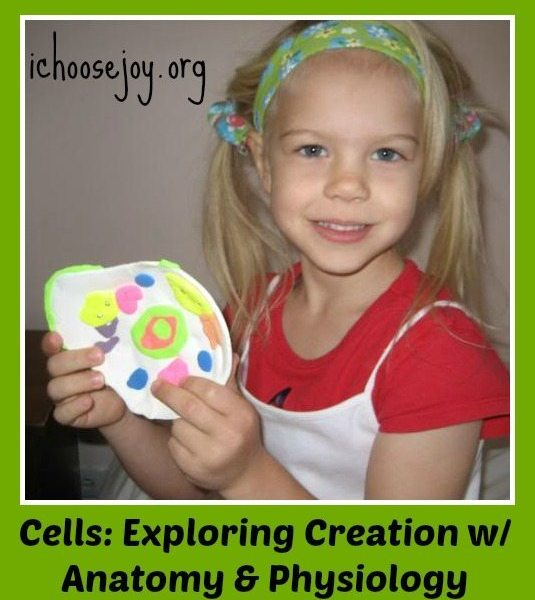 Making models of Cells with Exploring Creation With Human Anatomy and Physiology