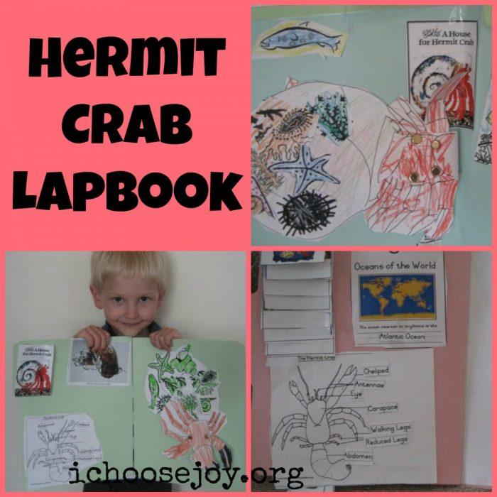 Hermit Crab lapbook