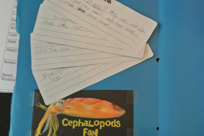 Apologia Zoology 2 lapbook 016