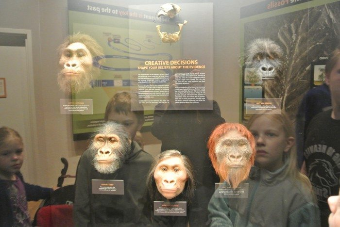 zoo Creation Museum 030