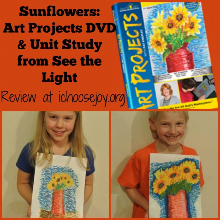 See the Light Sunflowers Art DVD