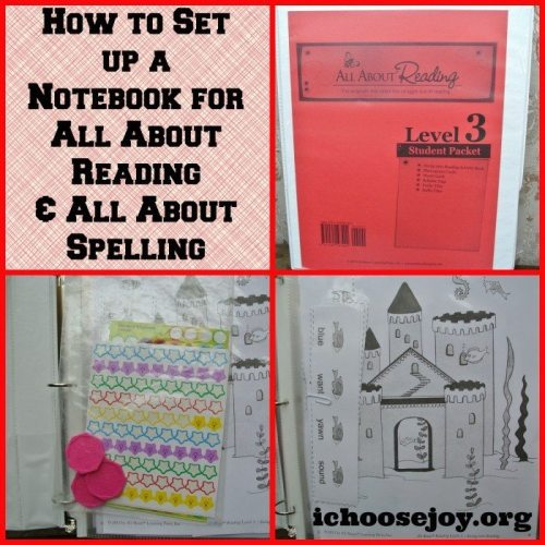 Set up Notebook All About Reading and Spelling