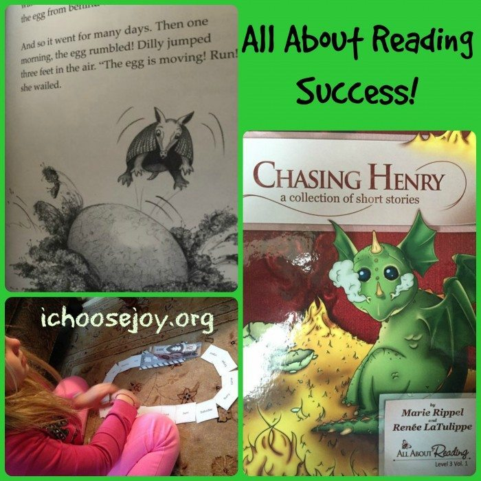 All About Reading Success