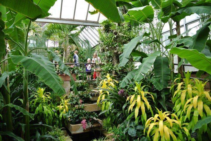 Botanic Gardens 023
