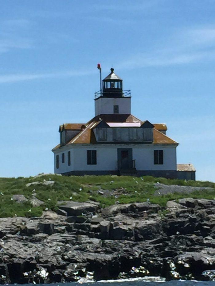 Canada Maine vacation -G phone 088