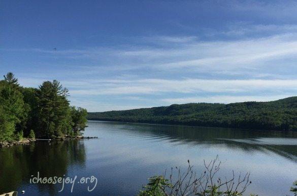 Maine roadside view