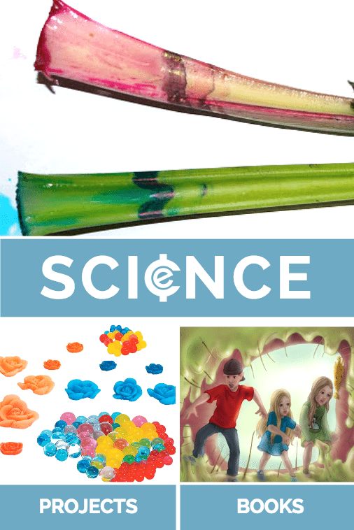 Back to School Science Projects