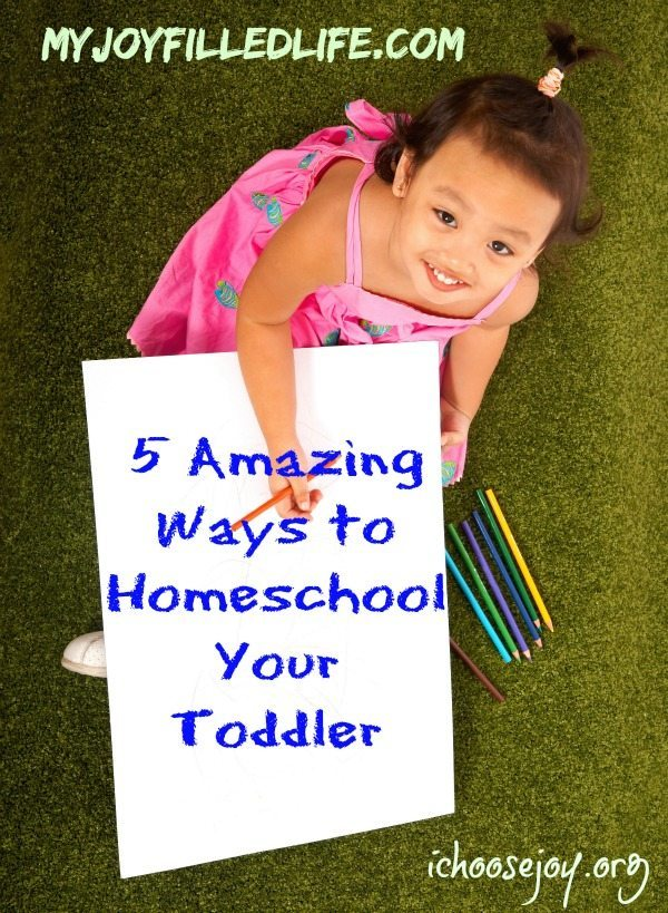 5 Amazing Ways to Homeschool Your Toddler!