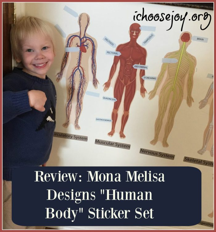 """Review: Mona MELisa Designs """"Human Body"""" Peel, Play, and Learn Sticker Set"""