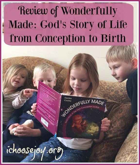 Wonderfully Made From Birth to Conception book review