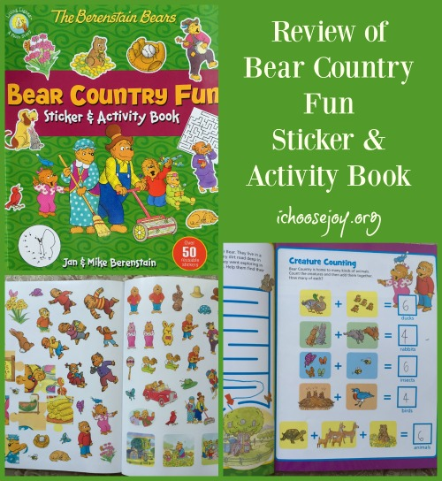Bear Country Fun Sticker & Activity book review
