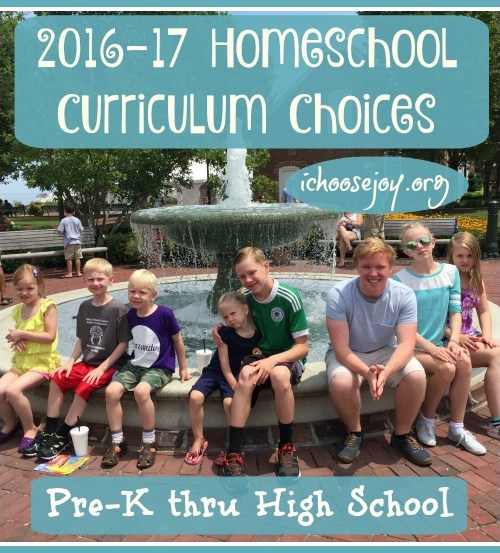 Homeschool Curriculum Choices 2016 - 2017 for 7 kids, preschool thru high school
