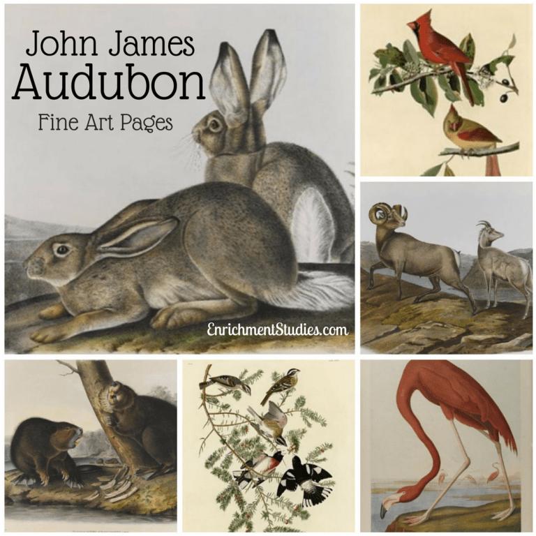 John James Audubon Fine Art Pages
