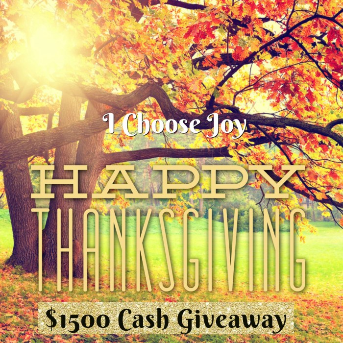 $1500 Cash Giveaway, three winners $500 each.