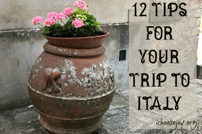 12 Tips for Your Trip to Italy from I Choose Joy! #italy #italyvacation #italytips