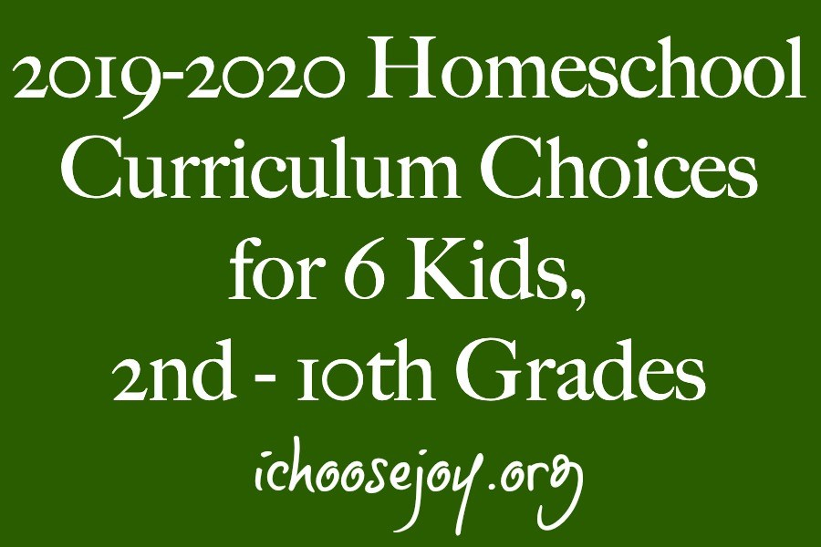 2019-2020 Homeschool Curriculum Choices for 6 Kids, 2nd - 10th Grades