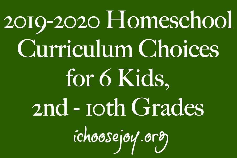 2019-2020 Homeschool Curriculum Choices for 6 Kids, 2nd - 10th Grades