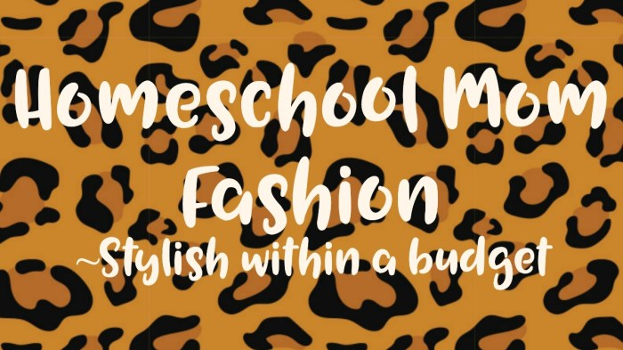 Homeschool Mom Fashion ~ Stylish within a budget