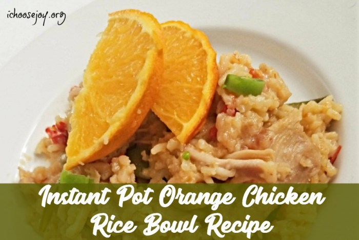 Instant Pot Orange Chicken Rice Bowl Recipe