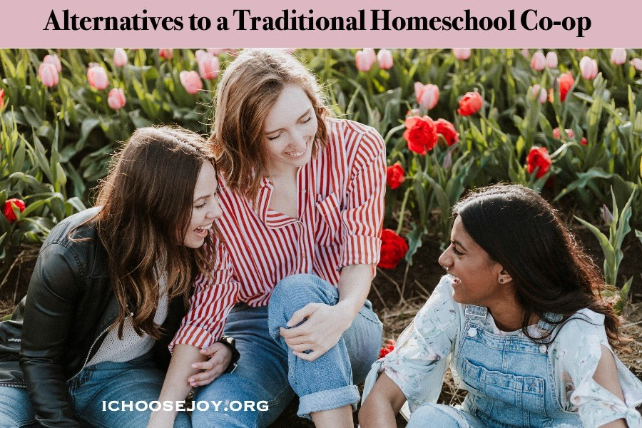 Alternatives to Homeschool Co-op
