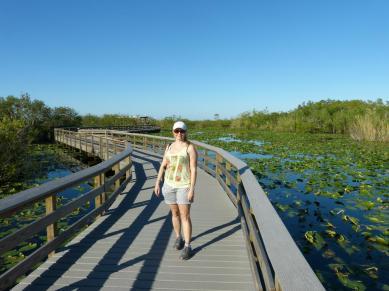 Wandern auf dem Anhinga Trail
