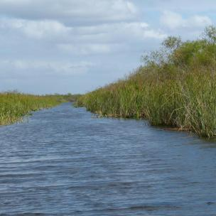 Wasserkanal in den Everglades
