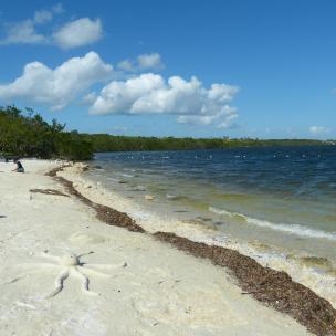 Amerika USA Florida Keys Key Largo John Pennekamp Coral Reef State Park Strand Meer