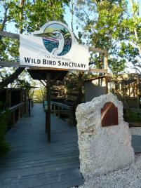 Wild Bird Sanctuary in Tavernier