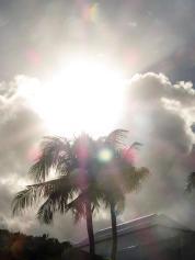 Palmen, Wolken und Sonne-900x1200