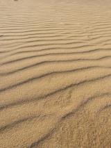 Portugal Algarve Portimao Praia da Rocha Strand Meer Sand