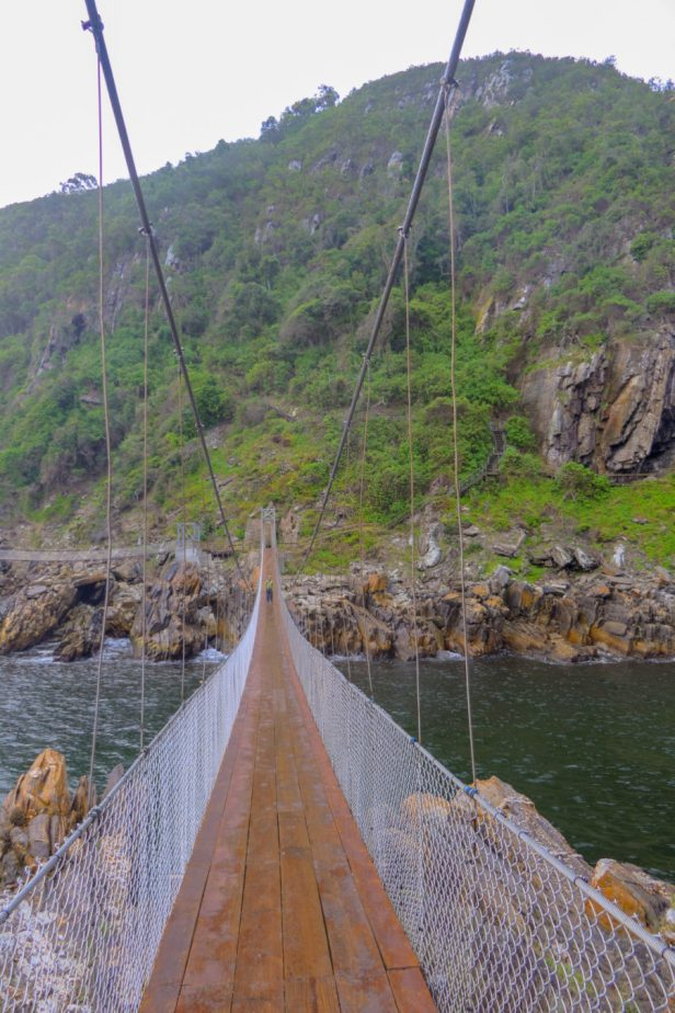 Südafrika South Africa Garde Route Tsitsikamma Nationalpark Storms River Mouth Trail Suspension Bridge Hängebrücke