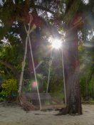 Thailand Koh Ngai Koh Hai Insel Andamanensee Inselparadies Strand Strandspaziergang Schaukel