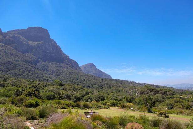 Südafrika South Africa Kapstadt Cape Town Kirstenbosch Botanical Garden Botanischer Garten