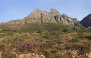 Südafrika Kapstadt Cape Town Sunset Tour Abendsonne Tafelberg Landschaft
