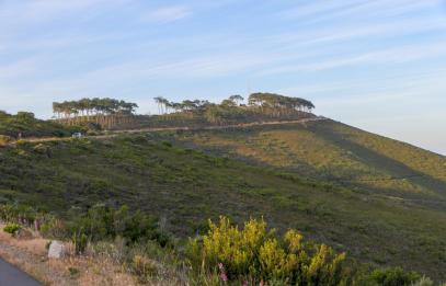 Südafrika Kapstadt Cape Town Sunset Tour Signal Hill Abendsonne
