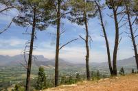 Südafrika South Africa Weinregion Winelands Franschhoek Pass Berge Ausblick Weinfelder