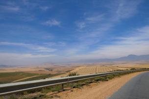 Südafrika South Africa Straße Felder Landwirtschaft