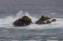 Südafrika South Africa Hermanus Kap Walker Bay Cliff Walk Klippenpfad Meer Felsen Brandung