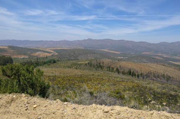 Südafrika South Africa Kleine Karoo Oudtshoorn Swartberge Swartberg Pass Berge Ausblick Weitblick