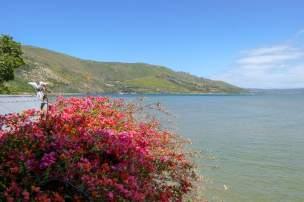 Afrika Südafrika South Africa Garden Route Knysna Lagune Tow Angels Guesthouse