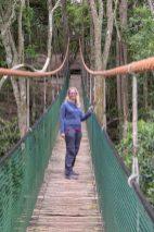 Südafrika South Africa Garden Route Kap Plettenberg Bay Monkeyland Saasa Affen Hängebrücke