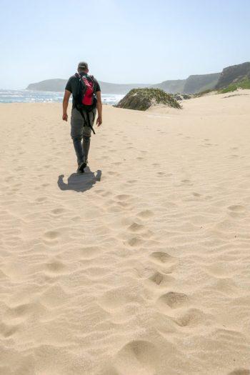 Südafrika South Africa Garden Route Kap Plettenberg Bay Robberg Nature Reserve Naturreservat Halbinsel Wanderung Strand