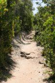 Südafrika South Africa Garden Route Kap Plettenberg Bay Robberg Nature Reserve Naturreservat Halbinsel Wanderung Wanderweg