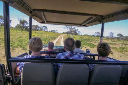 Südafrika South Africa Garden Route Ostkap Sibuya Game Reserve Wildreservat Safari Geländewagen