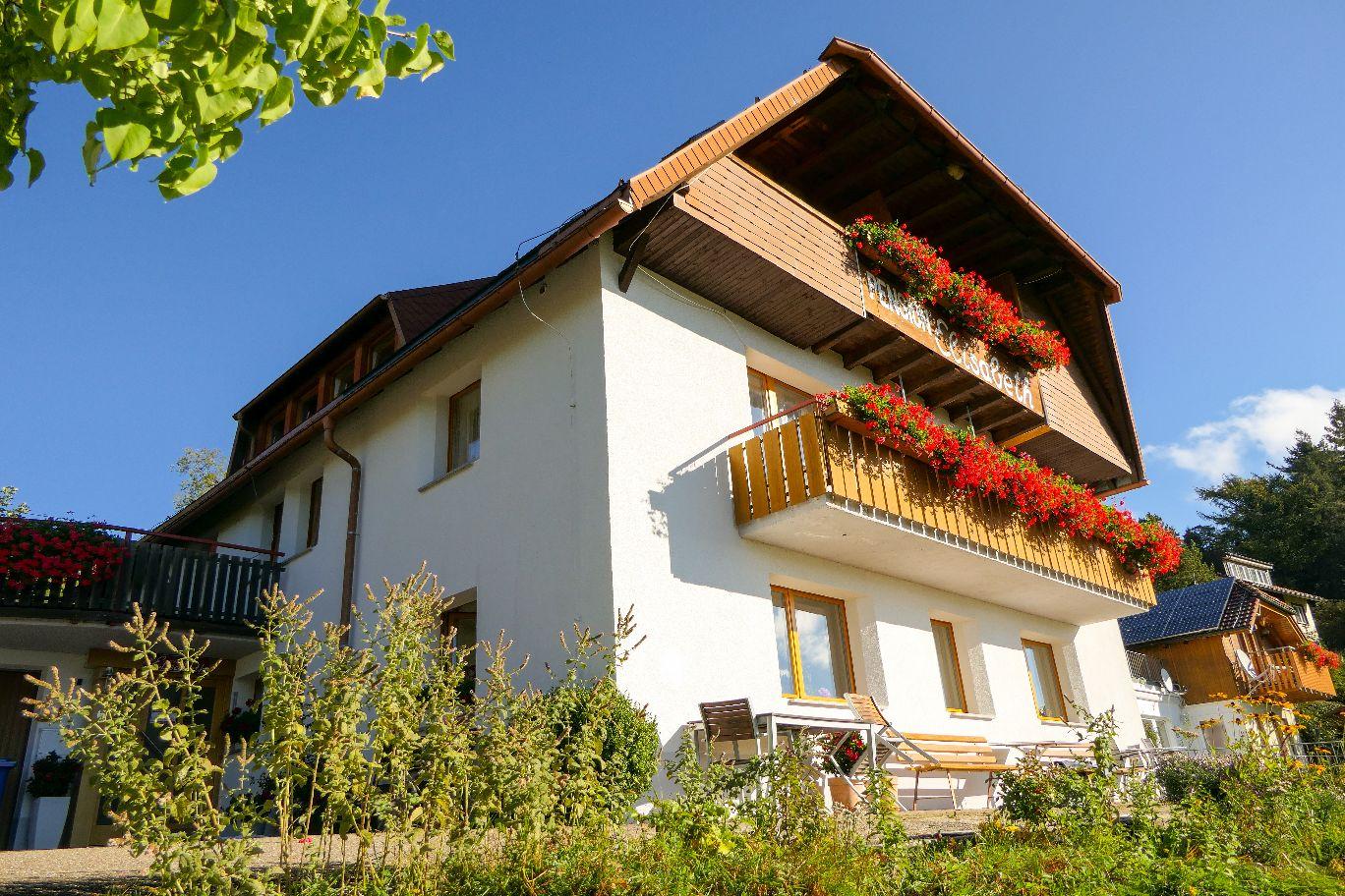 Deutschland Schwarzwald Hochschwarzwald Todtnauberg Pension Elisabeth Hotel
